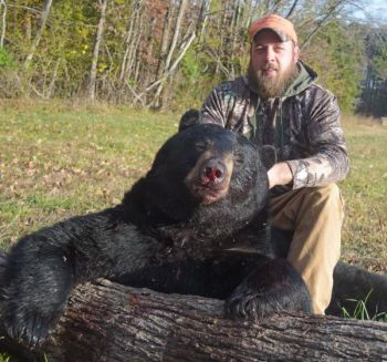 David Barker bagged this large male bear during November, one of only four taken during 2017's season at Caswell County.