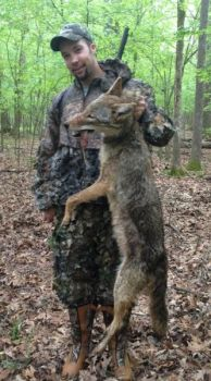 Coyotes of both genders will respond to calls as the breeding season approaches.
