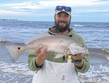Guide David Towler of Swansboro, N.C., knows red drum are available in 2 to 3 feet of surf water off local barrier islands this month.